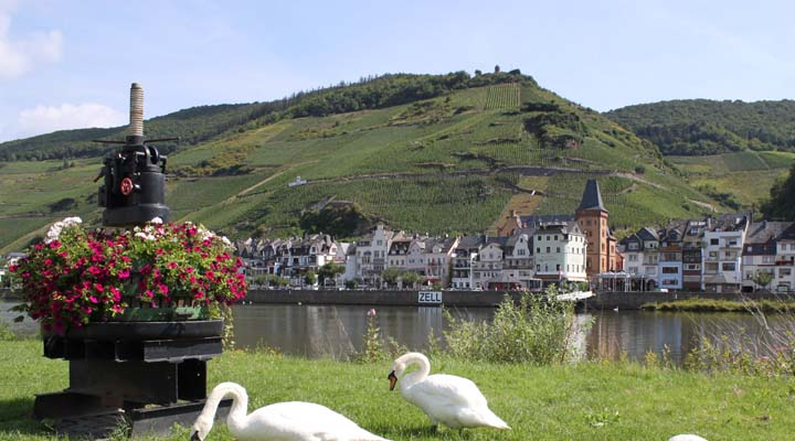 zell mosel buergerservice